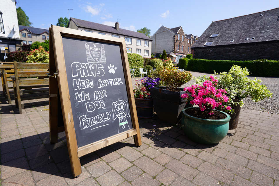 Dogs Welcome at The Forth Inn